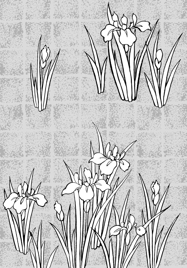 白描花卉图 日本线稿花草6